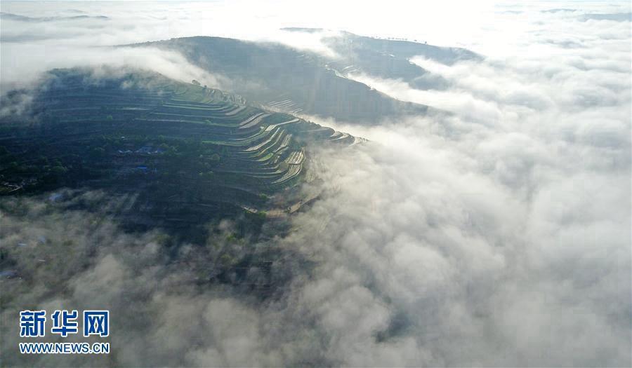 Провинция Ганьсу: очаровательные террасовые поля в море облаков