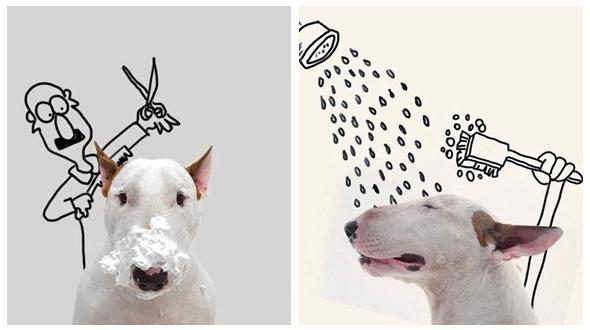 Художник создал для своей собачки интересные фотографии