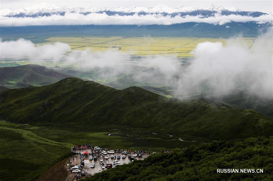 Цветущие рапсовые поля в уезде Мэньюань
