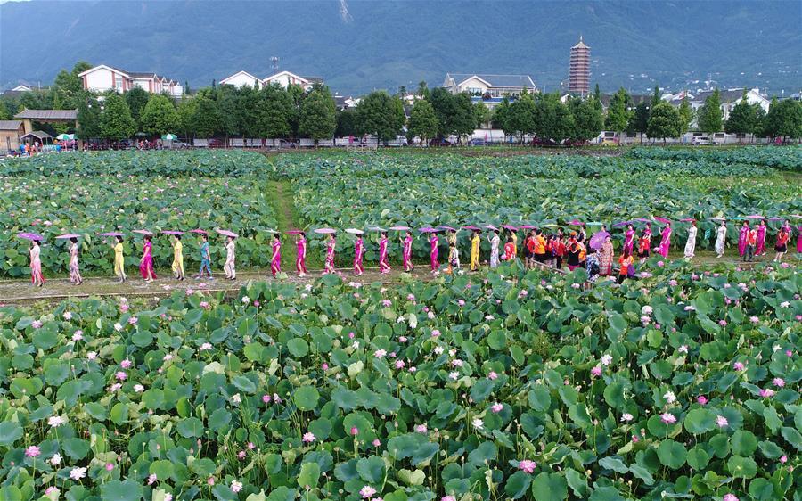 Шоу ципао среди цветущих лотосов в Мяньчжу