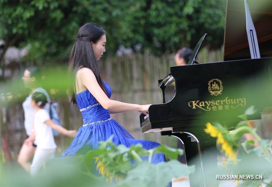 Фортепьянный концерт среди зеленых полей в Хунани