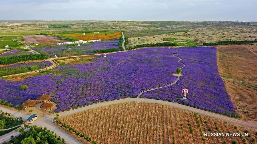 Пустыня, ставшая садом -- Ландшафтный парк в Нинся-Хуэйском АР