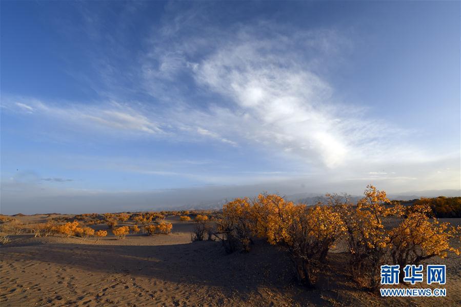 Завораживающие осенние пейзажи в провинции Цинхай