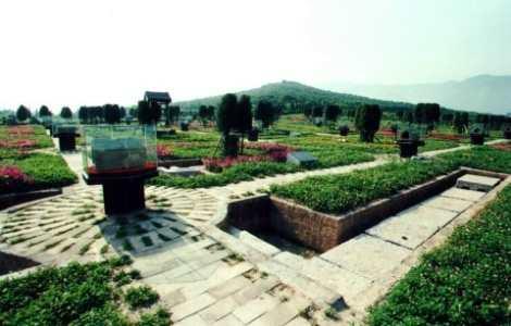Mausoleo del Emperador Qin Shihuang, terracota7