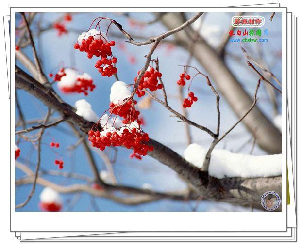 El invierno en China 001