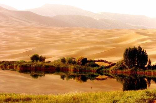 Los desierto más hermosos1