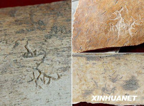 China descubrió letras anteriores a las Inscripciones de Hueso Oráculo1