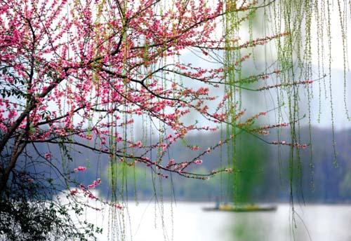 Hangzhou-remembranzas-sur -Yangtsé 3