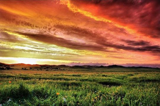 La pintoresca llanura de Saihanba
