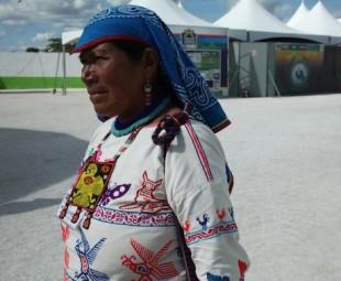 Los pueblos indígenas de México emitió declaración sobre biodiversidad y cambio climático