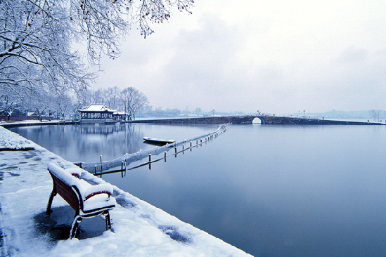Lago Oeste puro novia con velo blanco 1