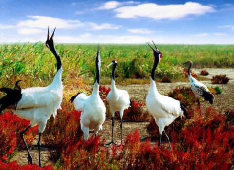 diez mejores reservas naturales de China 3
