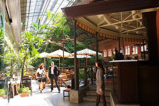 La de vieja atocha una estaci n de tren m s bella que un for Restaurante jardin botanico