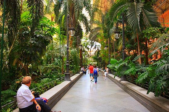 vieja Atocha estación de tren jardín botánico 5