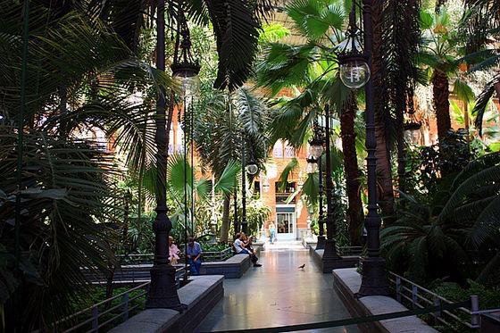 vieja Atocha estación de tren jardín botánico 7