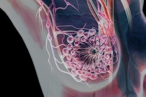 Te dan sorpresas los diagramas médicos de cuerpo humano en ...