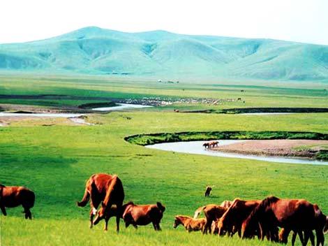 Las 10 praderas más hermosas de China 1