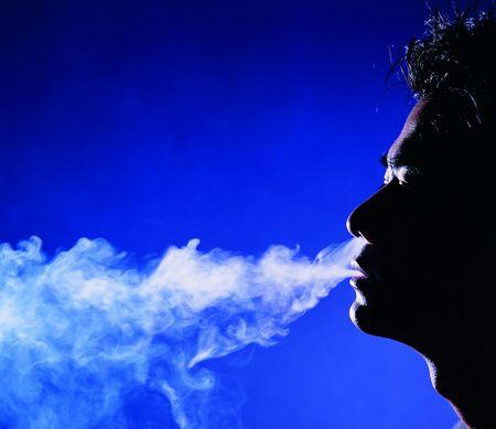 La Guarida Fumar Habanos: Apuntes para el placer
