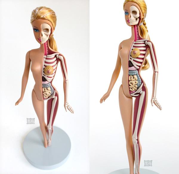 Anatomía fictícia de Barbie y Hello Kitty, ¡bonitos o horribles!_ ...