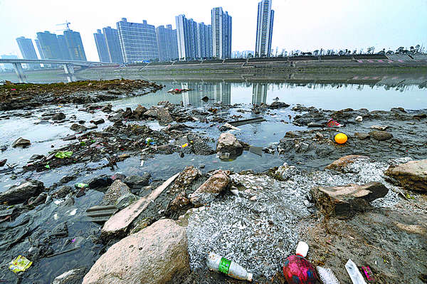 pollution problems in india essay We will write a custom essay sample on water pollution problems in africa and india specifically for you for only $1638 $139/page.