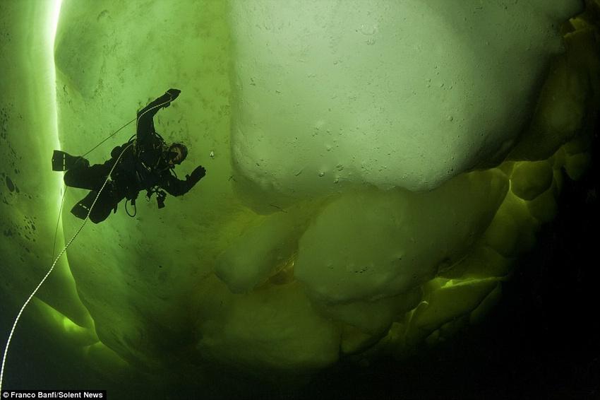 Palabras clave: Imágenes increíbles bajo el Mar Blanco, Franco Banfi