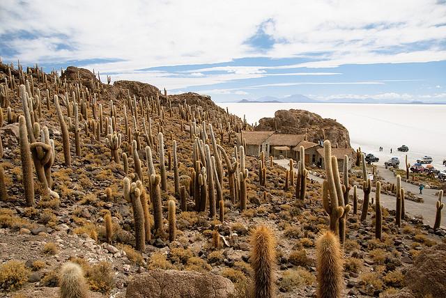 TOP 10 paisajes del Altiplano de los Andes Centrales que cuesta creer que existen 【Parte I】 3