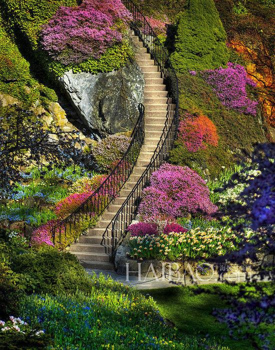 Nueve jardines m s bonitos del mundo for Jardines bonitos