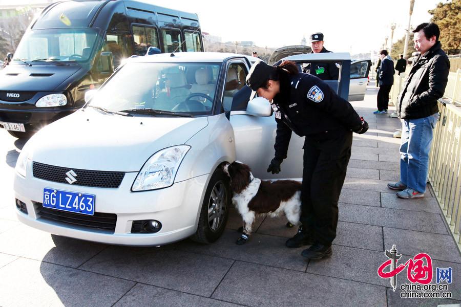 Perros anti explosivos trabajando para la seguridad de las sesiones
