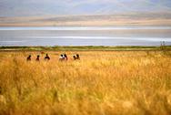 Lago Gahai, perla de la Meseta de Qinghai-Tíbet
