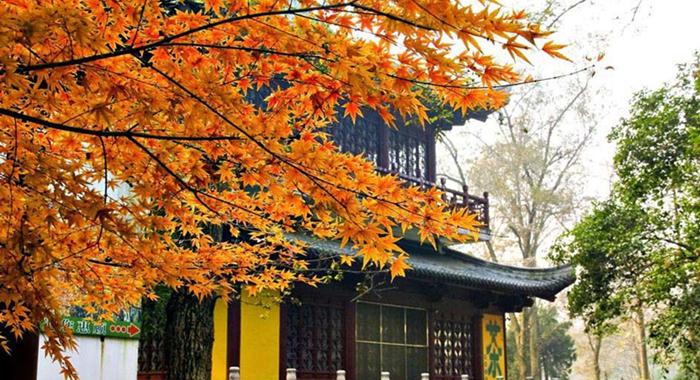 Los 10 mejores paisajes otoñales de China