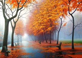 Paisaje inolvidabel de otoño de Rusia