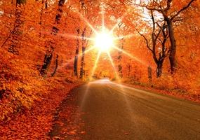 Diez propuestas para viajar en otoño