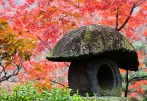 Hermosos lugares donde el otoño es un placer