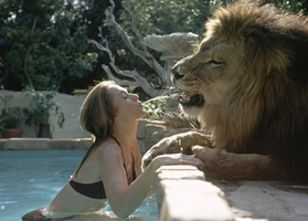 Mujer estadounidense tiene en casa un león como super mascota