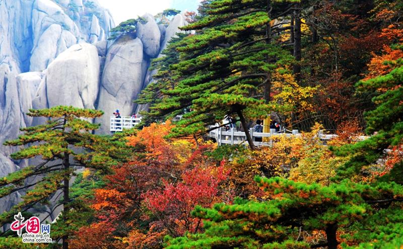 Los montes Huang: el mejor destino para pasar el otoño en ...