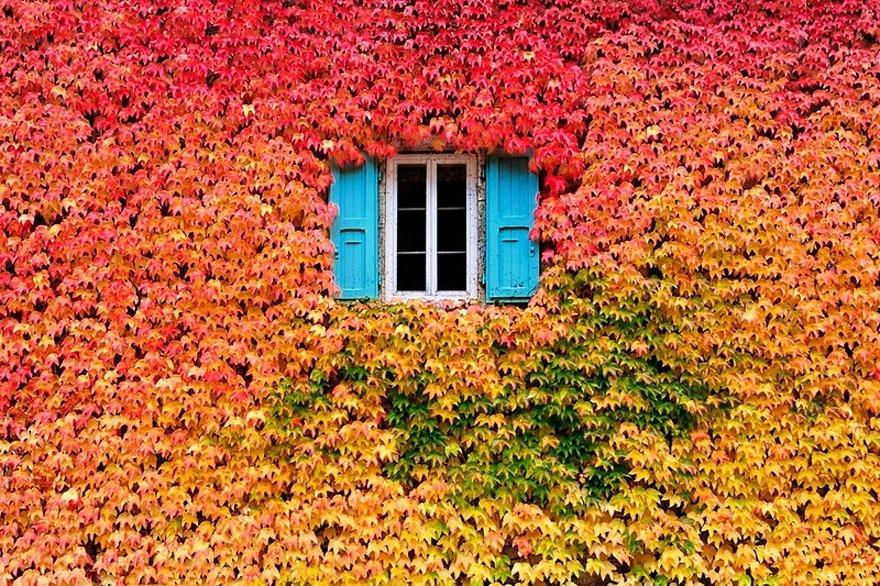 Panoramas más bellos de otoño