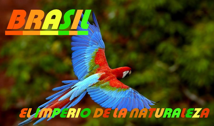 Brasil, el imperio de la naturaleza
