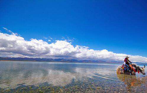 Reserva natural china de Kekexili solicita inclusión Patrimonio Mundial