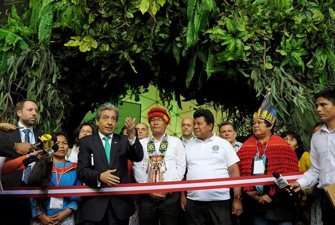 COP20: Indígenas amazónicos piden un dólar por hectárea para preservar selva