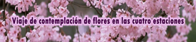 Viaje de contemplación de flores en cuatro estaciones