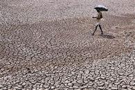 Mueren más de 150 personas por ola de calor en la India