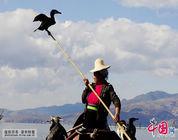 La habilidad de pesca con águila pescadora de Dali