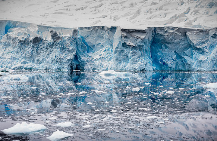 Polo Norte anterior xxx