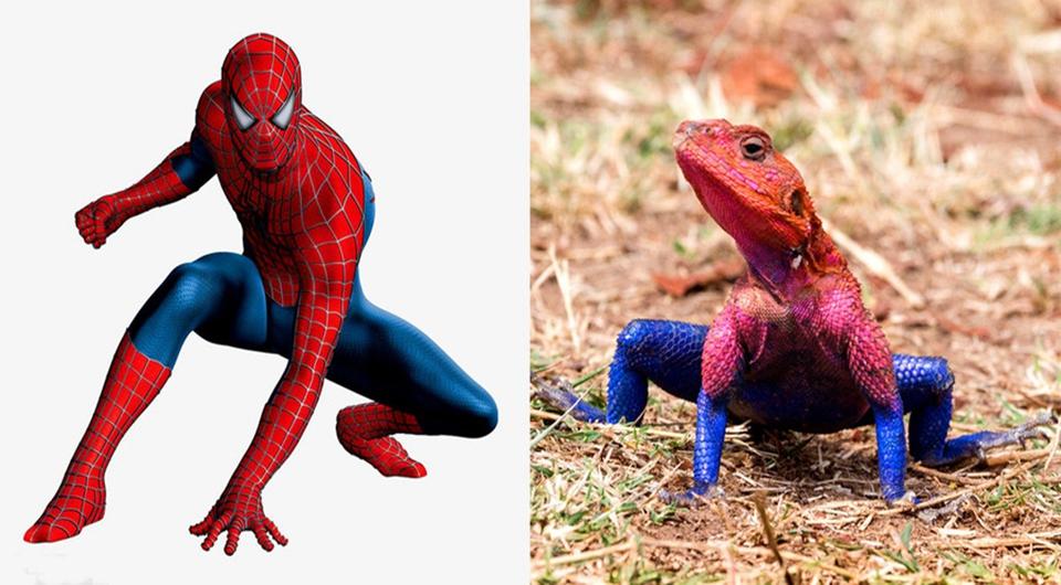 ¿Spider-Man? ¡Lagarto!