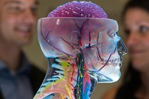 Impresión en 3D: la tecnología que remodela el futuro