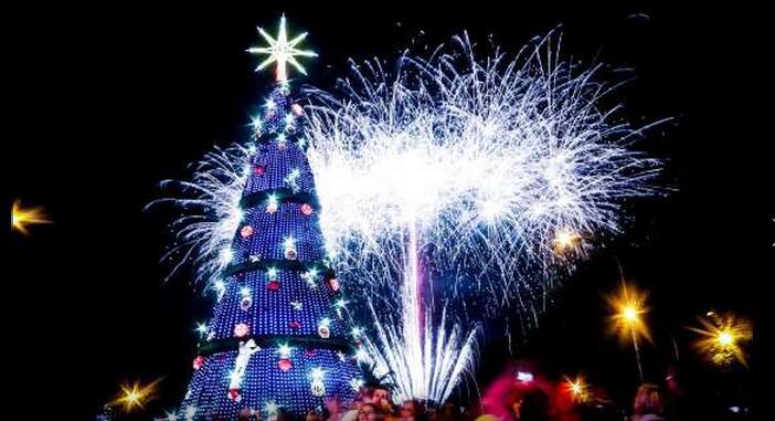 Temporada de árboles de Navidad
