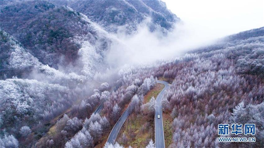 Paisaje de invierno del Distrito Forestal Shennongjia