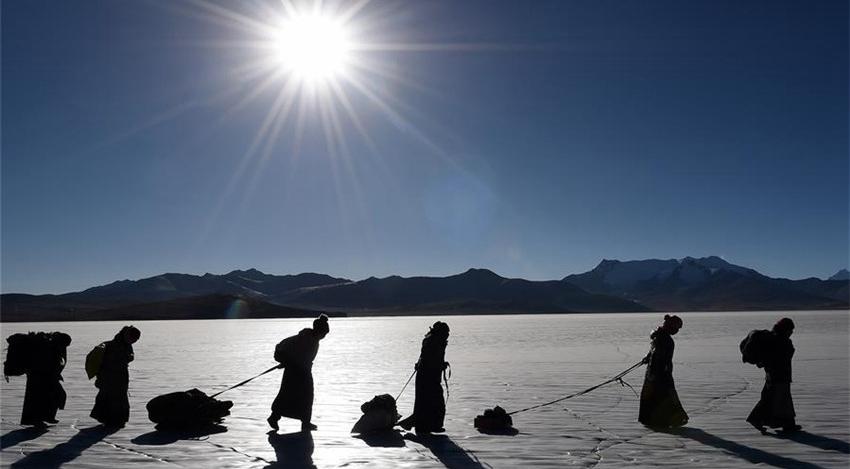 Tíbet: El tiempo para la anual migración de rebaños de ovejas