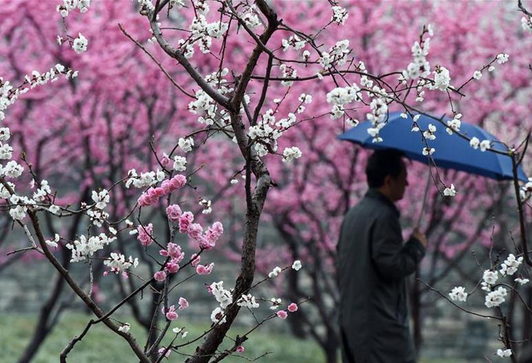 Parque de Reliquias de Pared de Dinastía Ming bajo lluvia en Beijing