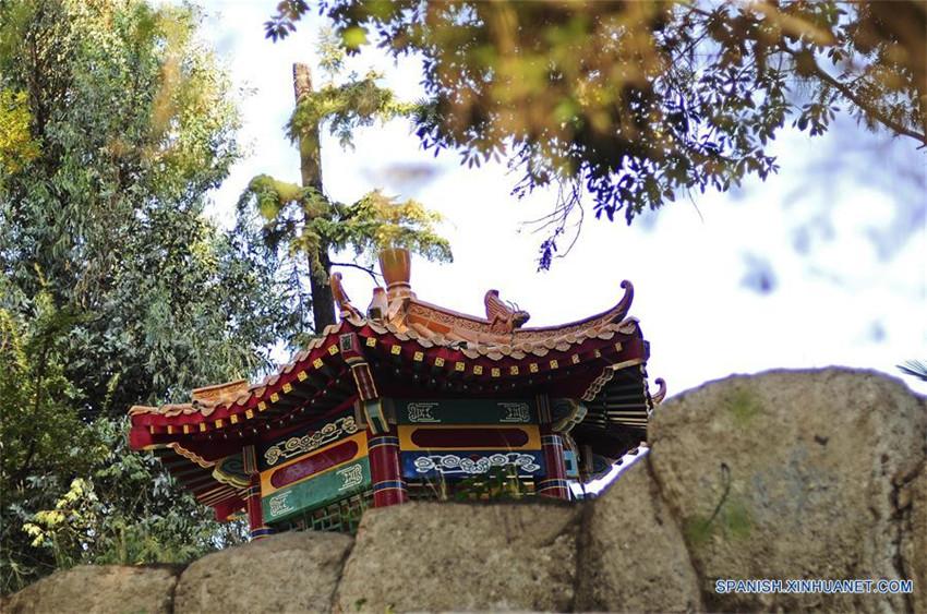 Chile jard n chino en santiago for Chino el jardin